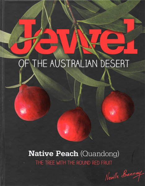 Jewel of the Australian Desert - Native Peach (Quandong)